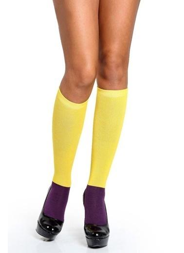 Miorre Çorap Sarı